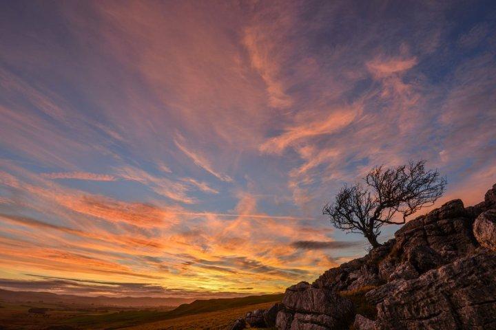sunset_on_Little_Asby_Hawthorn_1080x